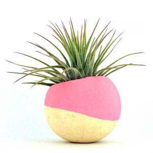 cupa-naturala-mica-roz